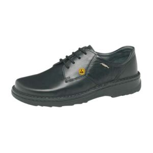 ESD Occupational Shoe 35710