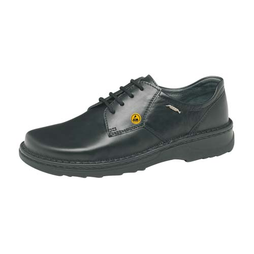 ESD Occupational Shoe 35710