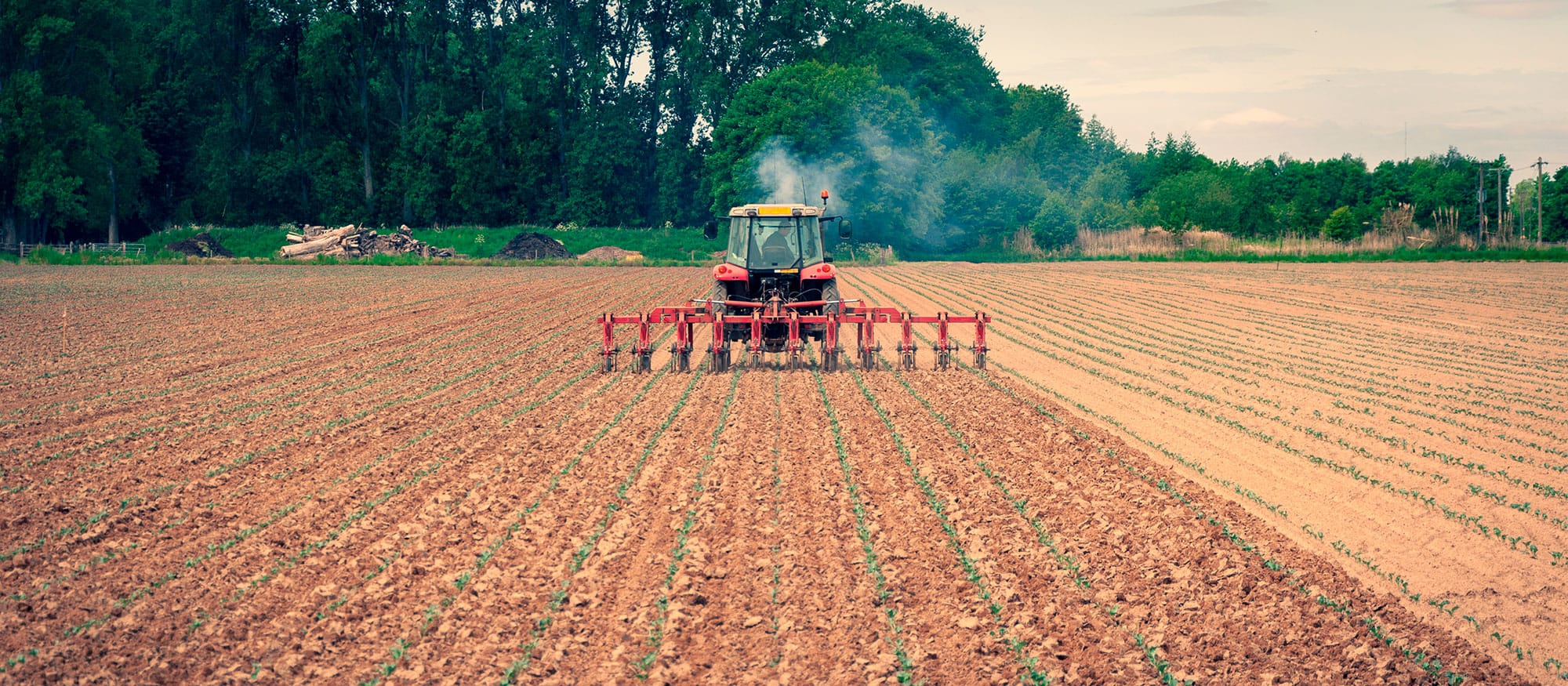 Farm Fumes: The Health Risks and Solutions